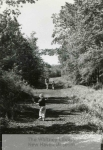 MSS 279: Farmington Canal Rail-to-Trail Association Records, 1986-2000