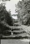 mss279-5-b-farmington-canal-greenway-hamden1-1764-800-600-80-wm-center_bottom-50-watermark2png