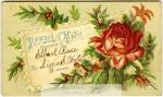 mss56_1_q_elbert_rose_reward_of_merit_11-354-800-600-80-wm-center_bottom-50-watermark2png