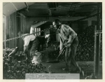 mss57f_1_a_workers_shoveling_oysters1-382-800-600-80-wm-center_bottom-50-watermark2png