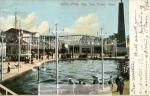 white_city____savin_rock-_postcard_collection__box_1-2205-800-600-80-wm-center_bottom-50-watermarkphotos2png